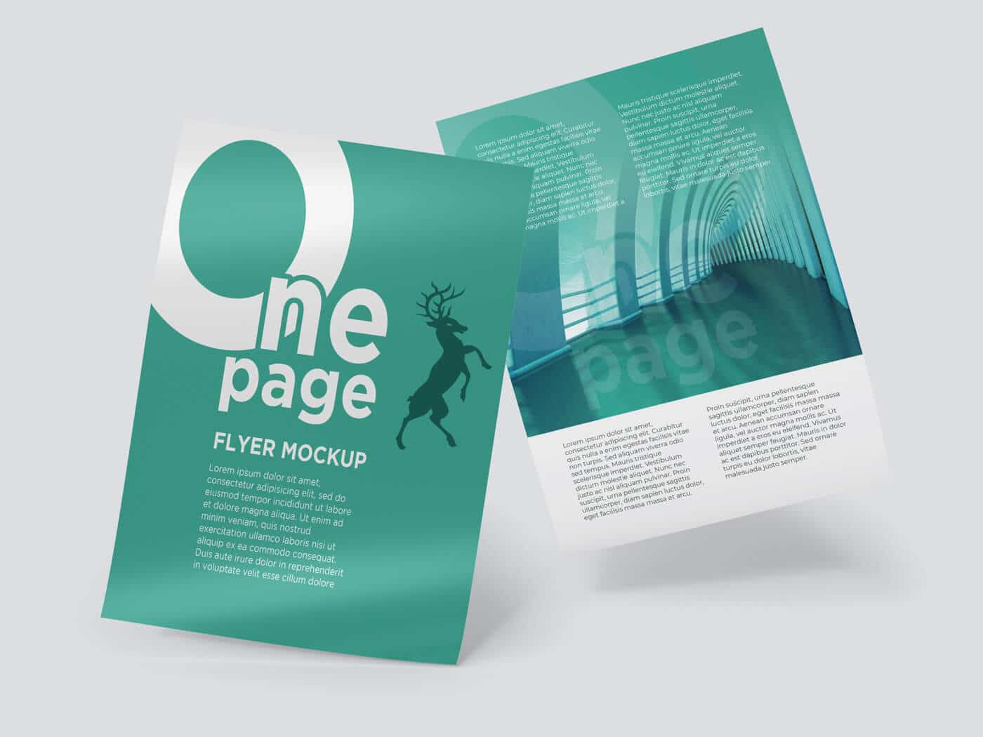 One Page Flyer Mockup