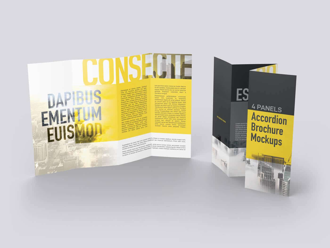 01-Accordion-Brochure-Mockup