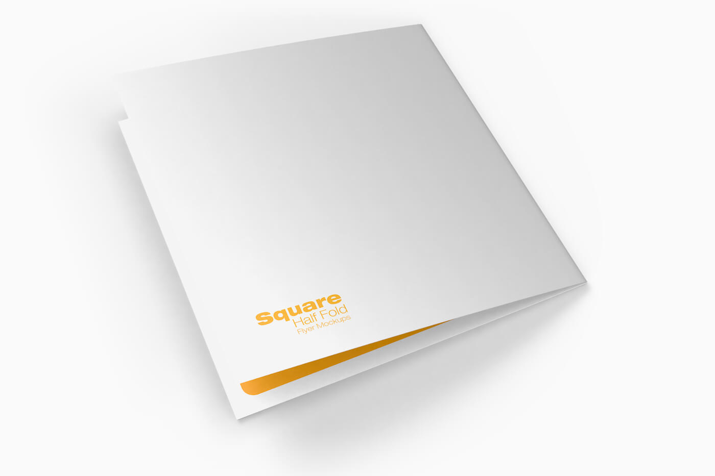 Square Half Fold Brochure Mockups 06 1