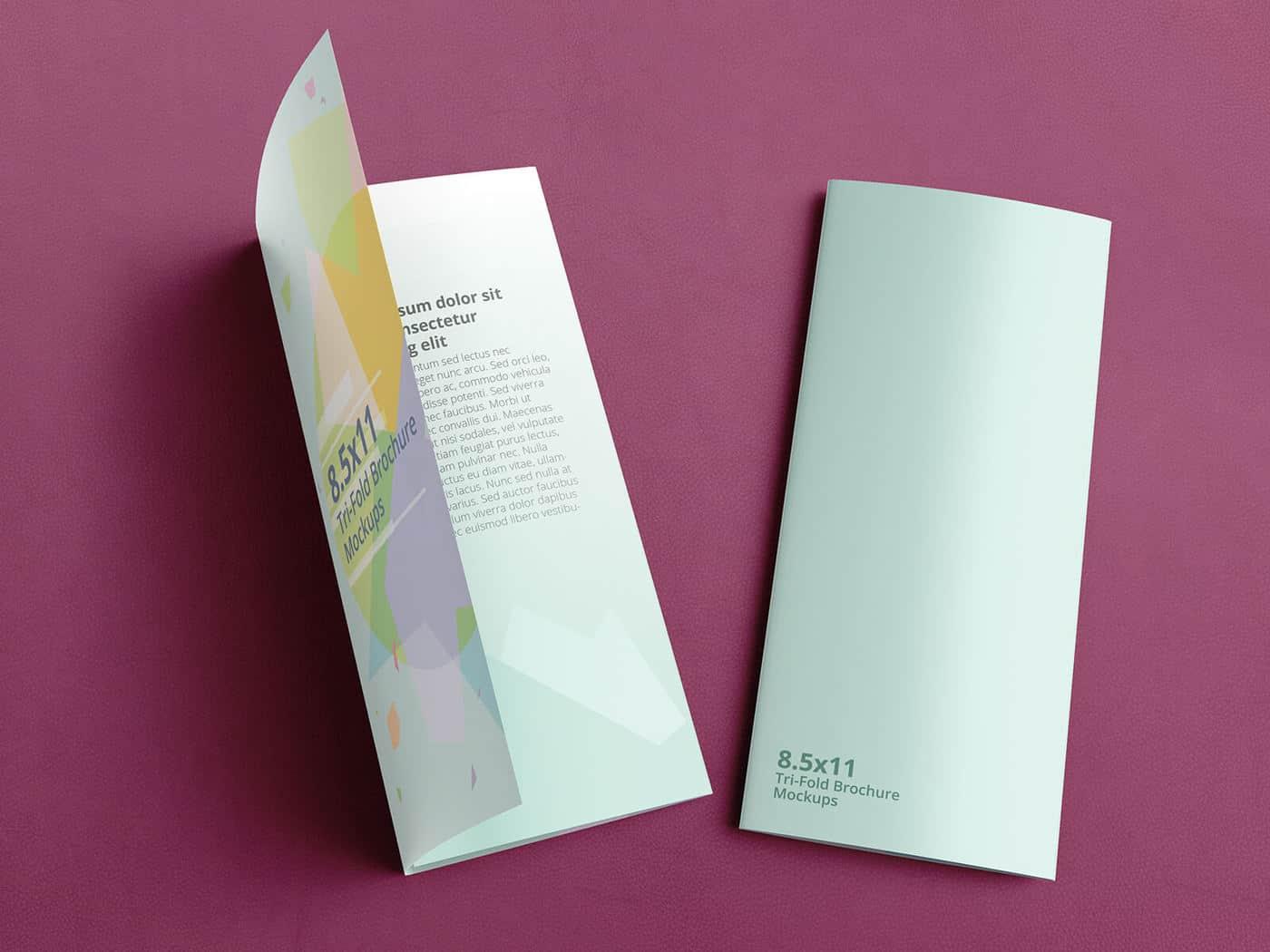 Trifold Brochure Mockups 8.5x11 size